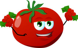 Rich tomato Royalty Free Stock Photography