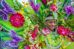 The rich tropics is depicted by a young Trinidadian masquerader. A smiling young lady from Trinidad depicts the rich rainforest with its trees and flowers as she Royalty Free Stock Photography