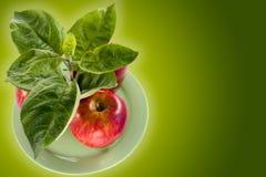 rich upraw jabłkowy Fotografia Stock