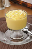 Rich vanilla pudding Royalty Free Stock Photos