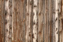 Rich Wood Background Stock Photography