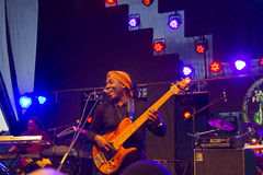 Richard Bona Royalty Free Stock Photo