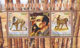Richard Francis Burton und Affe Stockfoto