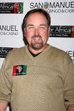 Richard Karn Royalty Free Stock Photo
