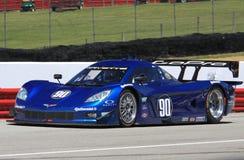 Richard Westbrook. Races the Corvette Daytona Prototype car for Spirit of Daytona Racing team at the professional motorsports racing event, International Motor Royalty Free Stock Photos