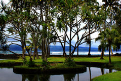 Richardson Beach Park in Hilo, Hawaii Royalty Free Stock Photos
