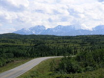 Richardson Datenbahn, Alaska lizenzfreies stockfoto