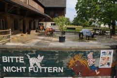 Riches de ¼ de ZÃ : La stalle de cheval de la clinique suisse d'épilepsie image libre de droits