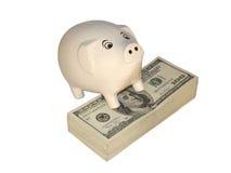 Riches un porc Photographie stock libre de droits