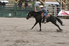Richest Indian Rodeo Stock Images