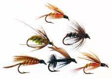 Richiami di pesca di mosca Fotografia Stock