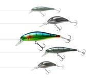 Richiamo attraente di pesca fotografia stock