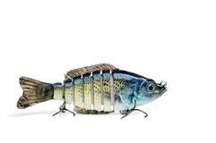 Richiamo di pesca dell'esca di nuotata Fotografia Stock Libera da Diritti