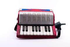 Richly colored small accordion toy. On a white background Stock Photography