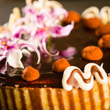 Richly decorated cake with chocolate coating Stock Photo