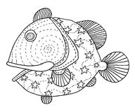 Richly decorated fish hand drawing. Richly decorated fish vector hand drawing illustration Royalty Free Stock Photos