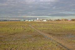 Richmond, BC terreno coltivabile di inverno fotografia stock libera da diritti