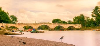 Richmond-Bridge. Richmond Bridge spanning over the river Thames at low tide in summer, London U.K stock photo