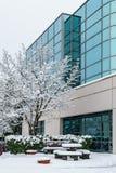 Richmond, CANADA - 12 février 2019 : Voitures garées près de l'immeuble de bureaux couvert de neige à l'horaire d'hiver photographie stock
