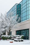 Richmond, CANADA - 12 febbraio 2019: Automobili parcheggiate vicino all'edificio per uffici coperto di neve ad orario invernale fotografia stock