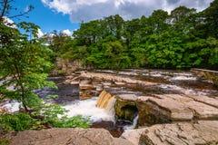 Richmond Falls ad acqua bassa fotografia stock libera da diritti