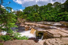 Richmond Falls bij laag water royalty-vrije stock foto
