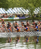 Richmond Hill High School Raiders Dragon Boat Royalty Free Stock Images