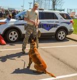 Richmond, KY US - 31. März 2018 - Ostern Eggstravaganza ein Offizier K9 zeigt Hunde- Techniken und Schulungsübungen stockfotografie