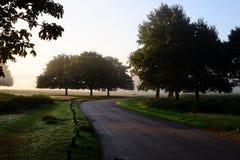 Richmond Park royaltyfria bilder