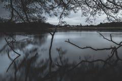 Richmond Park immagini stock