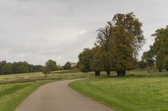 Richmond Park, Great Britan, October 14 2017 stock photo