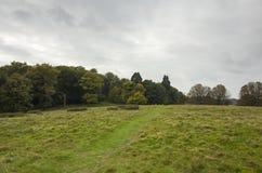 Richmond Park, großes Britan, am 14. Oktober 2017 Stockbild