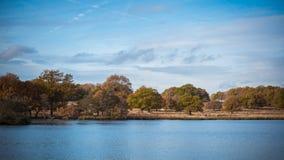 Richmond Park. Lac in Richmond Park, London, United kingdom Stock Photos