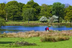 Richmond park in London,. Lake in Richmond park in London stock photo