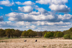 Richmond Park in London. Unidentified people walk in Richmond Park on a sunny day Stock Photos