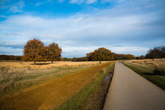 Richmond Park, London, United Kingdom Royalty Free Stock Photos