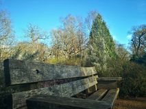 Richmond Park, London, Vereinigtes Königreich lizenzfreies stockbild