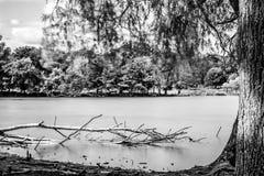 Richmond-Pen Pond fotografie stock