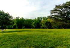 Richmond Va usa Maymount z drzewami, fontanny, wzgórza, dwór przy zmierzchem Obrazy Stock