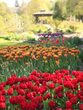 Richt het park van de Uitdagendheid in Tacoma, WA stock fotografie