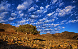 Richtersveld skies Stock Photography