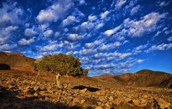 Richtersveld skies Stock Photography