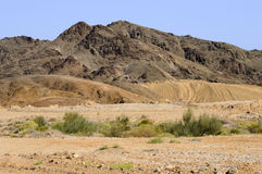 Richtersveld Transfrontier National Park, South Af Stock Photo