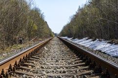 Richting van een enkelsporige spoorweg voor oude stoomtreinen of diesel treinen sporen en dwarsbalken in een mooi bos worden gele stock fotografie