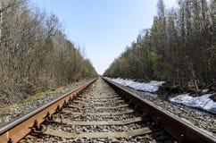 Richting van een enkelsporige spoorweg voor oude stoomtreinen of diesel treinen sporen en dwarsbalken in een mooi bos worden gele royalty-vrije stock afbeeldingen