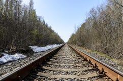 Richting van een enkelsporige spoorweg voor oude stoomtreinen of diesel treinen sporen en dwarsbalken in een mooi bos worden gele stock illustratie