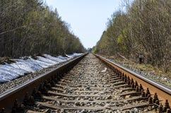 Richting van een enkelsporige spoorweg voor oude stoomtreinen of diesel treinen sporen en dwarsbalken in een mooi bos worden gele stock foto's