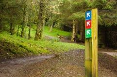 Richtungszeichen für gehende Wege Stockbilder