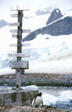 Richtungszeichen und Pinguin an der chilenischen Station, Paradies-Hafen, die Antarktis Lizenzfreie Stockbilder