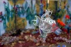 Riciclaggio delle bottiglie di plastica fotografia stock libera da diritti